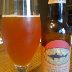 45.  Dogfish Head – 90 Minute Imperial IPA
