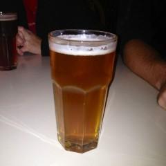 485. Schooner Exact Brewing Co. – Hopvine India Pale Ale IPA